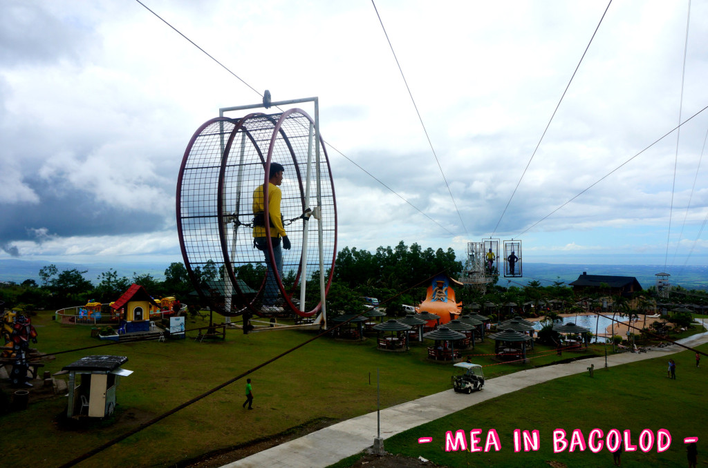 Campuestohan Highlands Resort Hamster Wheel 1