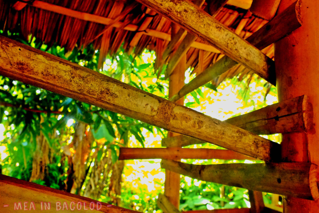 Bahay Kubo in Negros Occidental