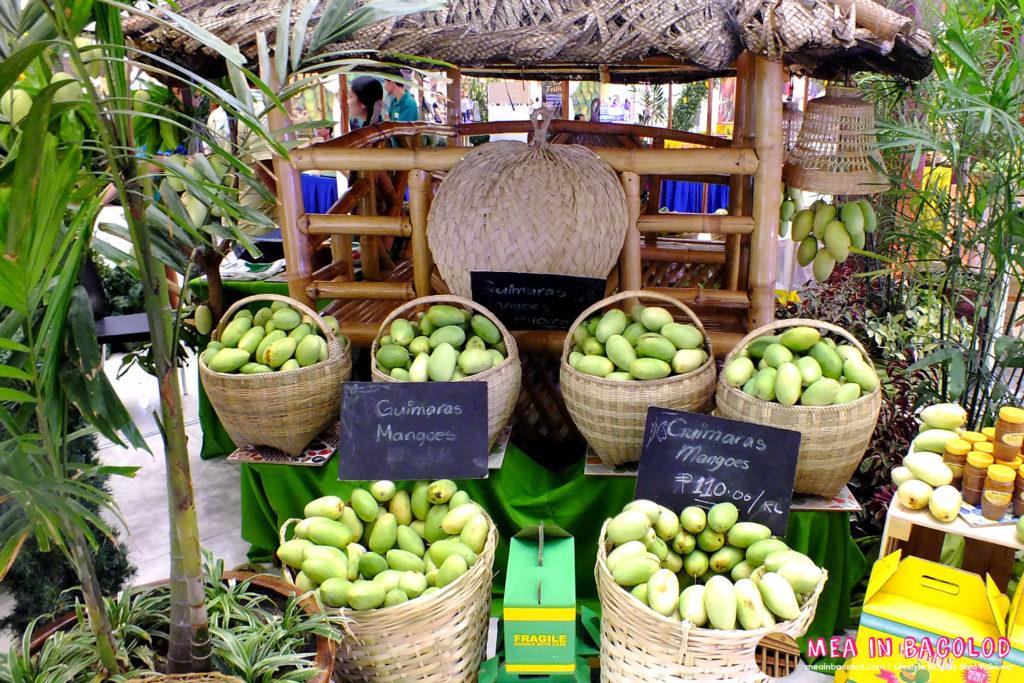 2016 Mango Festival at SM City Bacolod - 12a